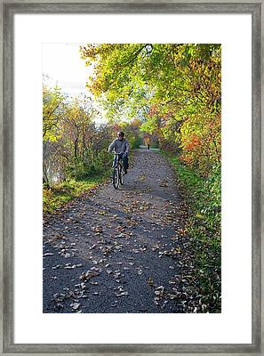 Cyclist In Parkland In Autumn Framed Print by Jim West