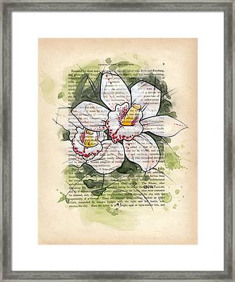 Cymbidium Flowers Framed Print by Rudy Nagel