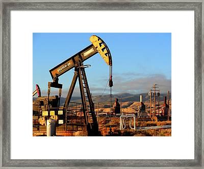 Cymric Field II Framed Print by Lanita Williams