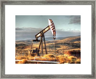 Cymric Field IIi Framed Print by Lanita Williams