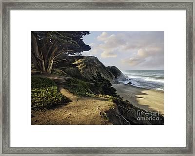 Cypress Beach Framed Print