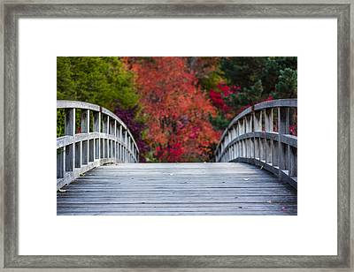 Cypress Bridge Framed Print by Sebastian Musial