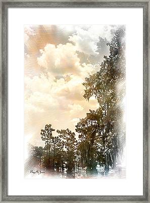 Swamp - Louisiana - Cypress Heaven Framed Print by Barry Jones