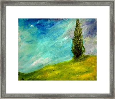 Cypress In Tuscany  Framed Print by David McGhee