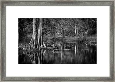 Cypress Pond Framed Print by DeWayne Beard