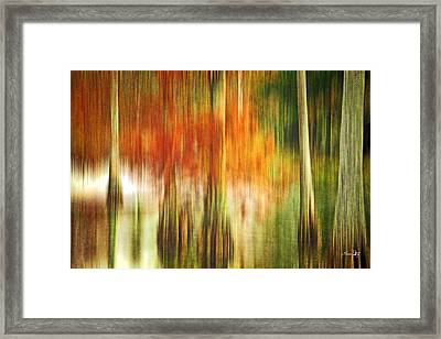 Cypress Pond Framed Print by Scott Pellegrin