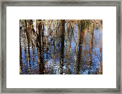 Cypress Reflection Nature Abstract Framed Print by Carol Groenen