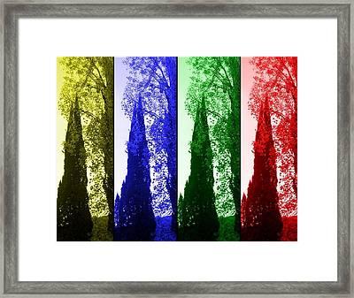 Cypress Framed Print by Rick Todaro