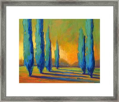 Cypress Road 5 Framed Print