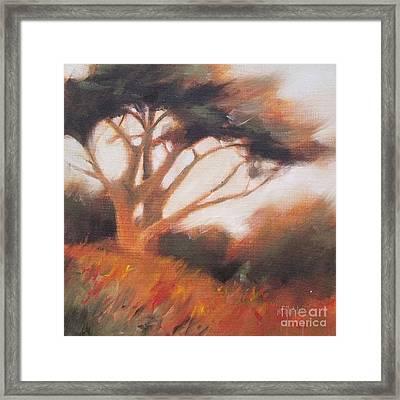 Cypress Slope 2 Framed Print