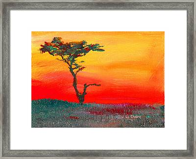 Cypress Sunrise Framed Print
