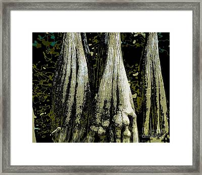 Framed Print featuring the photograph Cypress Three by Sally Simon