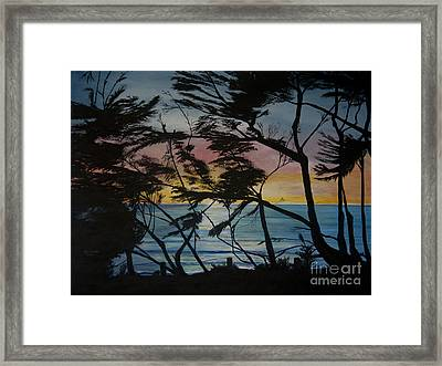 Cypress Trees At Sunset Framed Print by Ian Donley