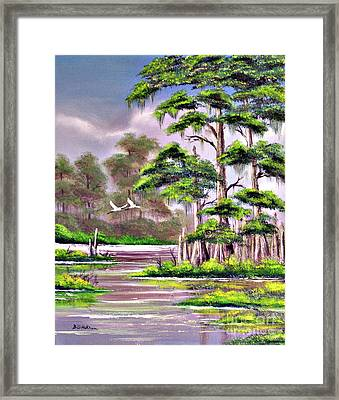 Cypress Trees-wakulla River Florida Framed Print by Bill Holkham