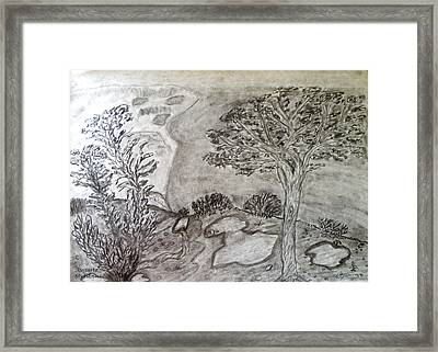 Cypresses In Cyprus Framed Print by Augusta Stylianou