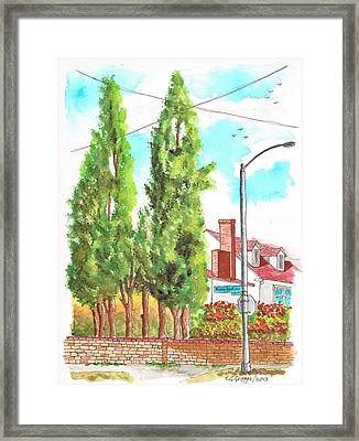 Cypresses In Massachusett Ave - Westwood - California Framed Print