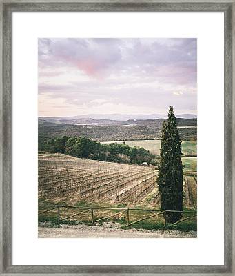 Cyprus In The Spring Framed Print by Clint Brewer
