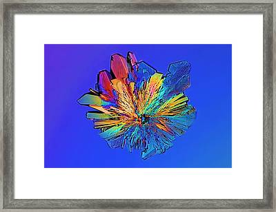 Cysteine Crystal Framed Print by Antonio Romero