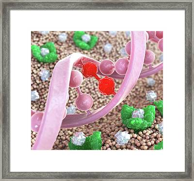 Cystic Fibrosis Framed Print by Animated Healthcare Ltd
