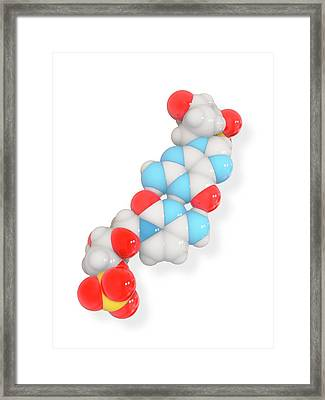 Cytosine-guanine Dna Base Pair Framed Print