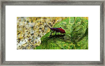 D Bugg Framed Print
