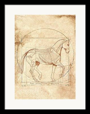 Horse Digital Art Framed Prints