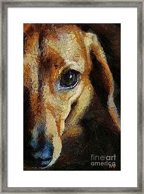 Dachshund Chocolate Framed Print