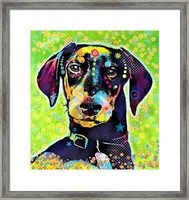 Dachshund Framed Print by Gary Grayson