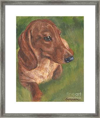 Dachshund Love Framed Print by Hope Lane