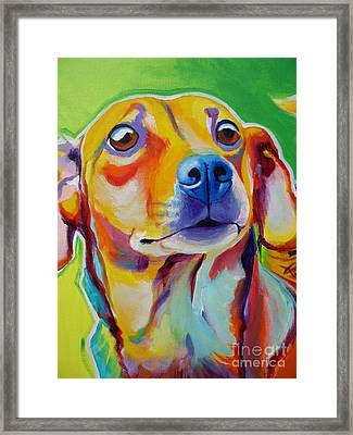 Chiweenie - Little Dog Framed Print by Alicia VanNoy Call