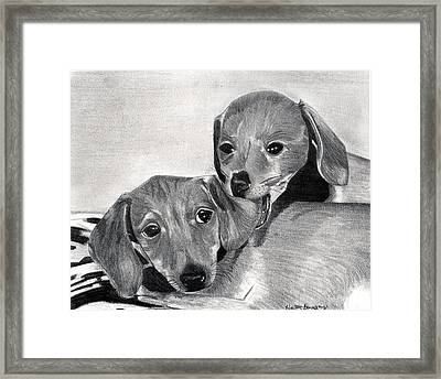 Dachshund Puppies Dog Portrait  Framed Print by Olde Time  Mercantile