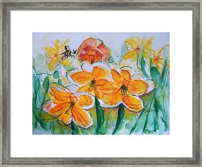 Daffies Framed Print