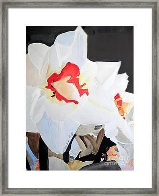 Daffodil 3 Framed Print