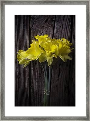 Daffodil Bunch Framed Print by Garry Gay