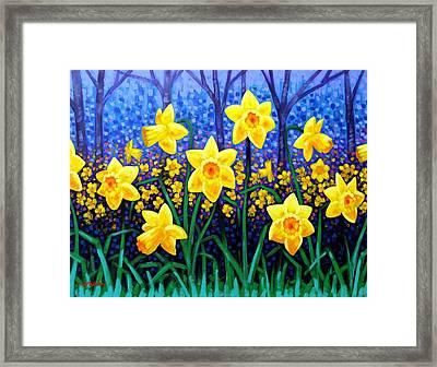 Daffodil Dance Framed Print by John  Nolan