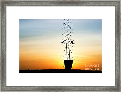 Daffodil Dawn Framed Print by Tim Gainey