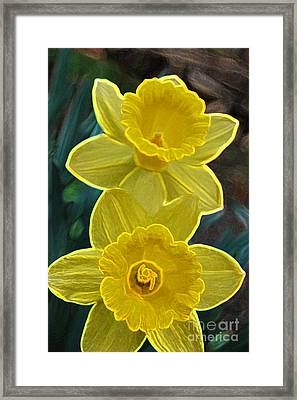 Daffodil Duet By Jrr Framed Print by First Star Art