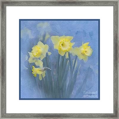 Daffodils In Blue Framed Print by Betty LaRue