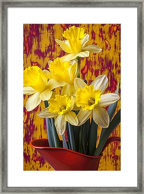 Daffodils In Orange Pitcher Framed Print by Garry Gay