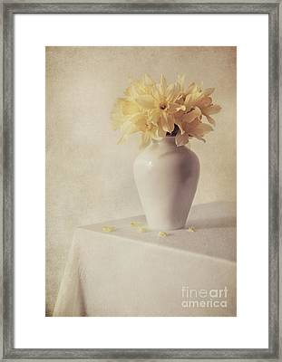 Daffodils In White Flower Pot On The Table Framed Print by Jaroslaw Blaminsky