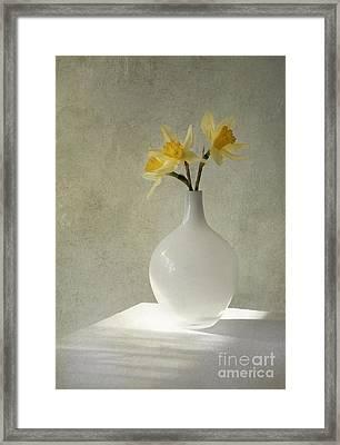 Daffodils In White Glass Flower Pot Framed Print by Jaroslaw Blaminsky