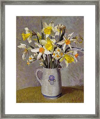 Daffodils  Framed Print by Harold Harvey