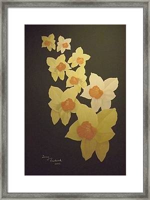 Daffodils Framed Print by Terry Frederick