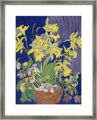 Daffodils With Jug Framed Print by Frances Treanor