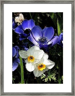 Daffy Blue And White Framed Print