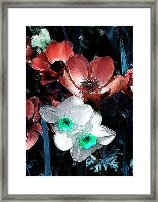 Daffy Pink And White Framed Print