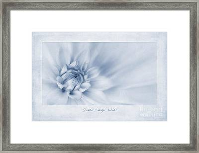 Dahlia 'abridge Natalie' Cyanotype Framed Print