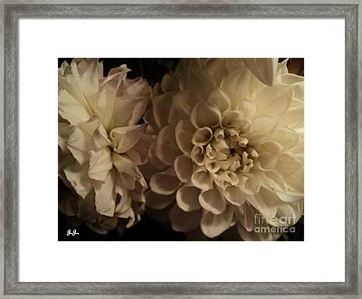 Framed Print featuring the photograph Dahlia Duo by Geri Glavis