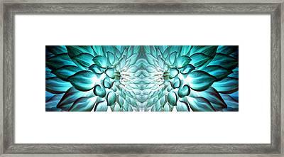 Dahlia Flower Art Framed Print by Sumit Mehndiratta