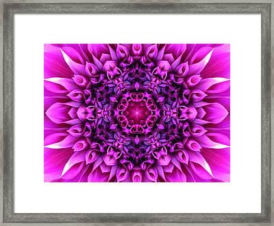 Dahlia Pink Star Mandala Framed Print